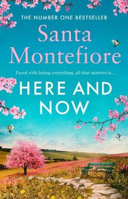 Cover of Here and Now - Santa Montefiore - 9781471169694