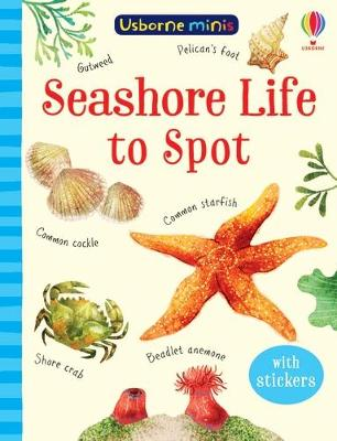 Cover of Seashore Life to Spot - Sam Smith - 9781474974981