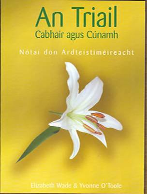 Cover of An Triail Notes (Cabhair & Cunamh) - Yvonne O'Toole & Elizabeth Wade - 9781845361402