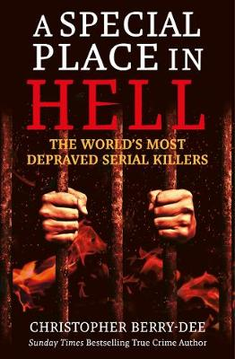 Cover of Special Place in Hell